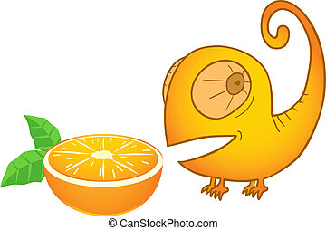 arancia, camaleonte