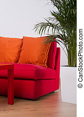 arancia, divano, rosso, cuscini