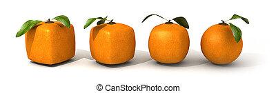 arancia, evoluzione