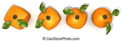 arancia, evoluzione, vista aerea