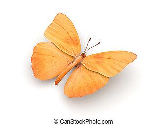 arancia, farfalla, isolato