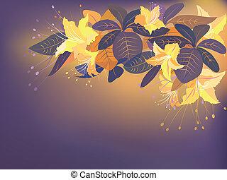 arancia, fiori esotici