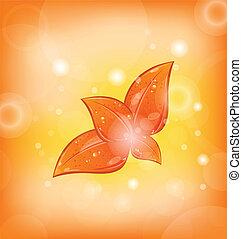 arancia parte, set, autunnale, fondo