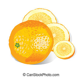 arancia, (vector)