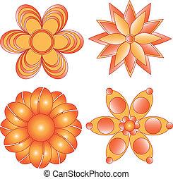 arancia, vettore, fiori