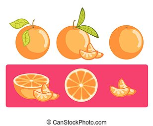 arancia, vettore, set, fette