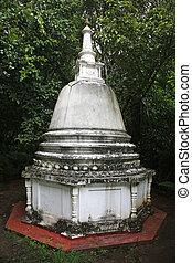 Araniya Panchakapaduwa Bentota - the Araniya Panchakapaduwa...