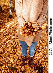 arany-, gyalogló, nő, évad, felett, liget, leaves., ősz, portré