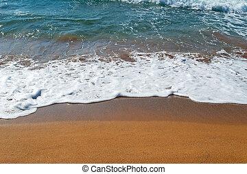 arany-, shoreline