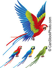 aras, macaw, papagai, sitzen, baum, spannweite, flügeln
