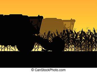 aratógép, gabonaszem, sárga, ősz, mező, vektor, kartell, vidéki, elvont, aratás
