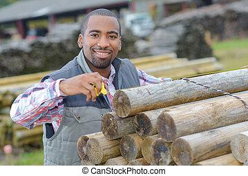 arbeider, vastleggen, hout