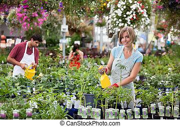arbetare, hos, växthus