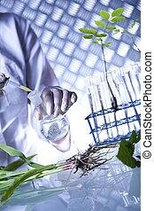 arbete, in, a, laboratorium, och, planterar