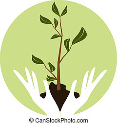 Illustration of human hands holding a young green plant.