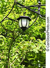 Arbor with lantern - Wrought iron arbor with lantern in lush...