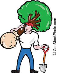 arborist, proceso de llevar, árbol, caricatura, jardinero