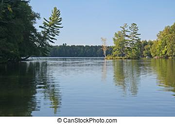 arborizado, ilha, refletido dentro, pacata, lago
