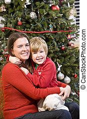 arbre étreindre, fils, mère, devant, noël