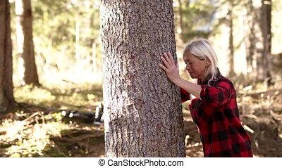 arbre., étreindre, randonneur, femme aînée, dehors, debout,...