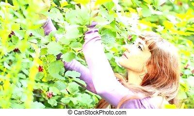 arbre, admire, fruits, girl, rouges, heureux