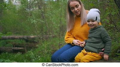 arbre, ahead., nature., séance, lui, fils, mère, bûche, ...