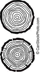 arbre, anneaux croissance
