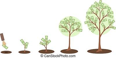 arbre argent, growth.