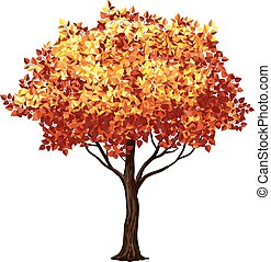 arbre, automne