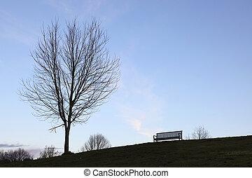 arbre, banc