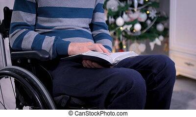 arbre, bible, lecture homme, fauteuil roulant, devant, noël