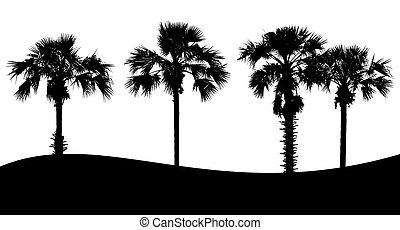 arbre, blanc, ensemble, silhouette, fond