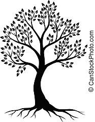 arbre, blanc, silhouette, fond