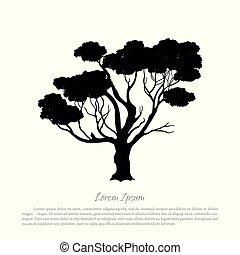 arbre, blanc, silhouette, fond, noir