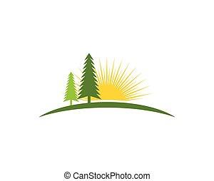 arbre cèdre, gabarit, logo