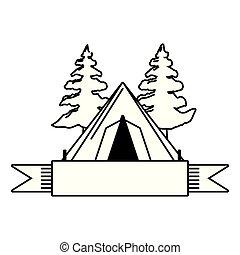 arbre, camper tente