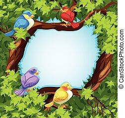 arbre, conception, frontière, oiseaux
