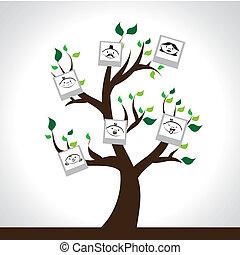 arbre, famille