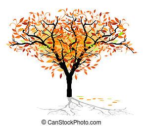 arbre feuillage caduc, automnal