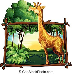 arbre, feuilles, girafe, manger
