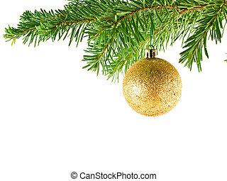arbre feuilles persistantes, ornement, isolé, branche, pendre, vacances, noël