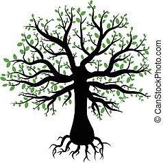 arbre, feuilles, silhouette, vert