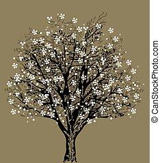arbre, fleurs blanches, silhouette