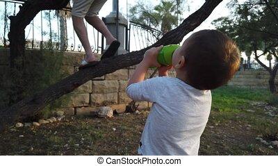 arbre grimpeur, bébé, eau potable, mignon, dady, garçon, ...