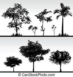 arbre, herbe, silhouette