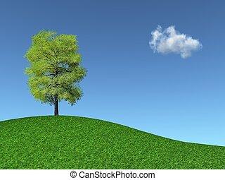arbre, herbeux, colline
