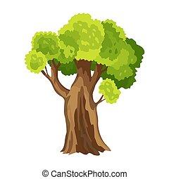 arbre, leafage., illustration, arbre., stylisé, foliage., vert, naturel, résumé, aquarelle