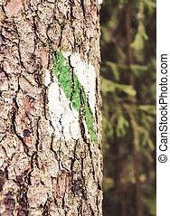 arbre, marque