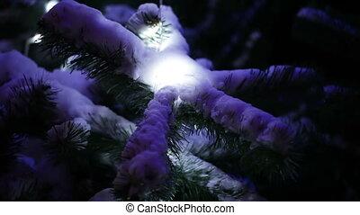 arbre, neige, noël