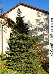 madrid arbre no l madrid place arbre spain espana no l. Black Bedroom Furniture Sets. Home Design Ideas